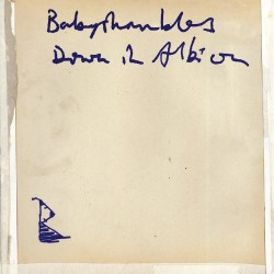 Babyshambles – Down in Albion