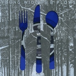 Young Widows / Plows – Split