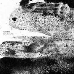 Mamiffer – Mare Descendrii