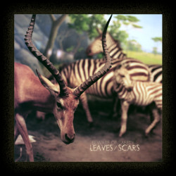 Beware Of Safety – Leaves/Scars