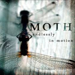 Moth – Endlessly in Motion