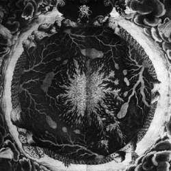 Sutekh Hexen – Luciform