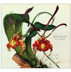 Botanist – VI: Flora