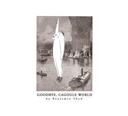 Benjamin Shaw - Goodbye, Cagoule World album cover