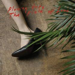 Iceage –  Plowing into the Field of Love