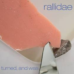 Rallidae – Turned, And Was