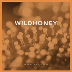 Wildhoney  – Seventeen Forever