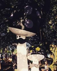 Electric Gardens Festival 2017-02