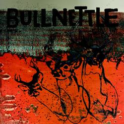 Records: SPB exclusive stream: Bullnettle