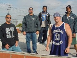 Bands: Suicidal Tendencies first record in 13 years