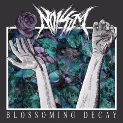 Tours: Noisem tour and recording plans