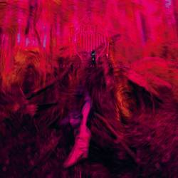 Records: Rebel Wizard is back this summer