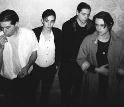 Tours: Iceage tour