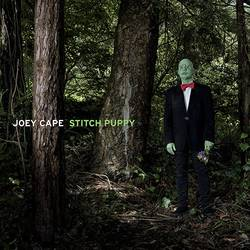 Videos: Punks in Vegas streams Joey Cape acoustic