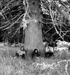 Bands: New Wolves in the Throne Room in 2014