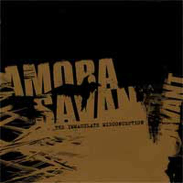 Amora Savant – The Immaculate Misconception cover artwork