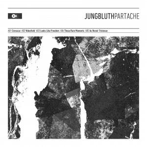 Jungbluth_PartAche_Cover_A-300x300.jpg
